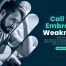 Call to embrace weakness